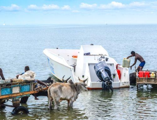 Fare una vacanza in Madagascar spendendo poco (prima parte: il Sud)