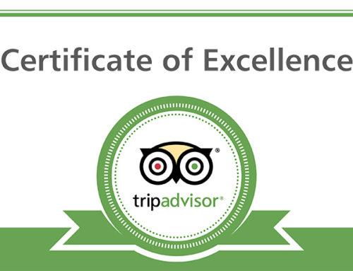 Le recensioni tripadvisor e booking